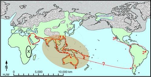 migration-south