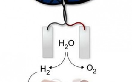 bionic-leaf-converts-sunlight-into-liquid-fuel